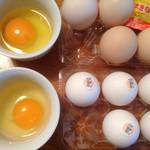 コッコきみまろ - 卵くらべ
