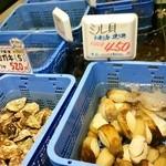 38166553 - いきいき館 貝類