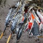 たつこ茶屋 - 岩魚の塩焼き