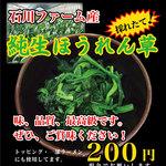 王道家 - トッピング 純生ほうれん草:200円。石川ファーム産。味、品質、最高級です。