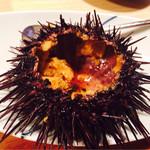辰美寿し - 料理写真:食べかけですみません…ウニ★
