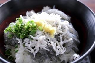 田子の浦港 漁協食堂 - 生・釜揚げしらす(^^♪