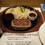 ハンバーグ逸品堂 - レギュラーハンバーグ(150g 800円)