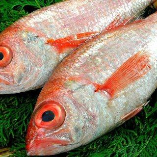 旬の地魚をリーズナブルにご提供!