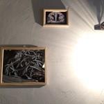 加古川ワインバル - 壁の写真や照明が素敵です