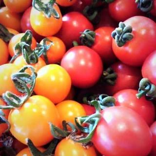 農園さんの新鮮な美味しい野菜が魅力‼