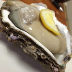 磯じま - 岩牡蠣が美味い季節到来