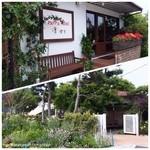 葉山珈琲パッパニーニョ - 全体が木々に囲まれ素敵なカフェでした。