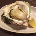 今、龍馬 - 岩牡蠣(900円)