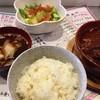 メシゴジラ - 料理写真:ビーフシチュー定食¥980