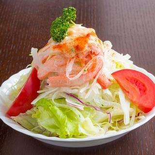 サラダが13種類と自家製ドレッシングが5種類もあります。