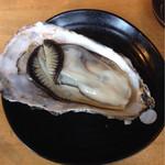 OHASHI - 蒸し牡蠣はぷりっぷりでした!