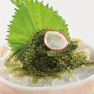 魚菜 日本橋亭 - 【沖縄県産】海ぶどう550円
