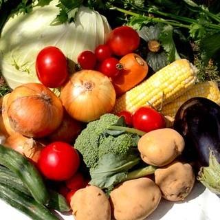 フードには道産食材を主に使用
