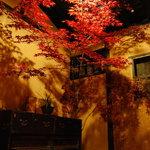 兎野六歩 - 玄関にて紅葉のディスプレイも楽しんで頂けます。(5月5日現在)