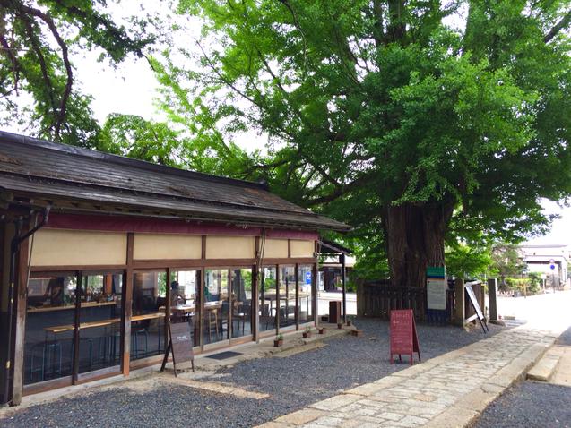 神社カフェ