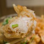 本町製麺所 本店 - 鶏天断面