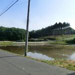 豆腐茶屋 佐白山のとうふ屋 - 2015年5月。近くの水田。