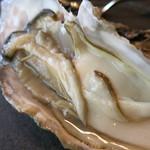 38991604 - 北海道厚岸産の生牡蠣