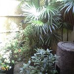 月ヶ瀬 - 中庭(外庭?)もあります。いいですねー。