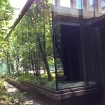 ザ・カフェ by アマン - カフェのガラスに写り込む木々^ ^