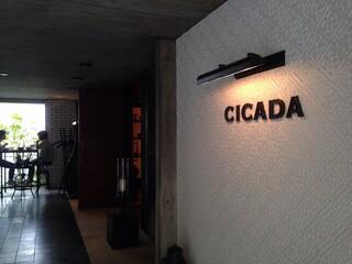 CICADA - 入口