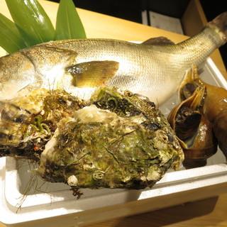産地直送の新鮮魚介