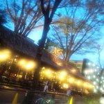 カフェ・ミケランジェロ - 春の夕暮れ時 気持ちいい風がふく