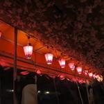 百萬馬力 - テラス席は桜でいっぱい!
