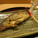 日本料理 太月 - 27年6月 四万十鮎 塩焼き 蓼酢で