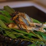 菊乃井 - 4-1)焼物~鮎塩焼き 蓼酢