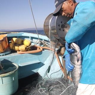 南三陸の漁師さんから送って頂く新鮮魚介