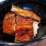 柳家 - 長良川 天然鰻丼