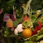 どろまみれ - 名物!15種の生野菜盛り