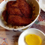 敦賀ヨーロッパ軒 - ご飯とカツ2枚を食べます