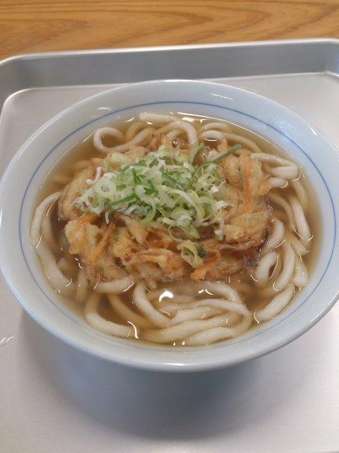 おくのうどん店 - 野菜天うどん350円
