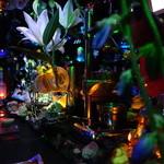 夜光虫 - カウンターの景色は、何が何やら解らん雰囲気に