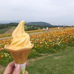 あわじ花さじき - あわじ花さじき びわソフトクリーム
