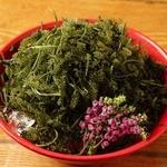 国分寺 魚しげ - 沖縄直送、海ぶどう。当店の定番です^^