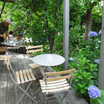 NISHIann cafe - 岡本町・西庵の紫陽花