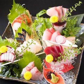 季節の朝獲れ鮮魚を刺身で心ゆくまで堪能…