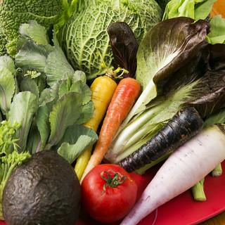 能登半島から毎朝届く赤土有機野菜