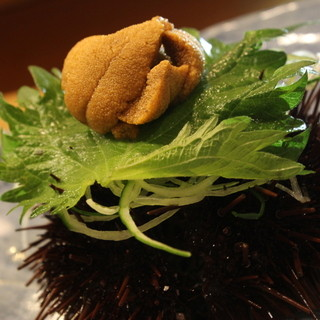 旬の魚介の滋味を味わう「大将のおまかせコース」5,000円~