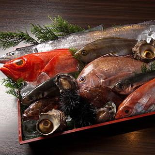 季節の産直鮮魚