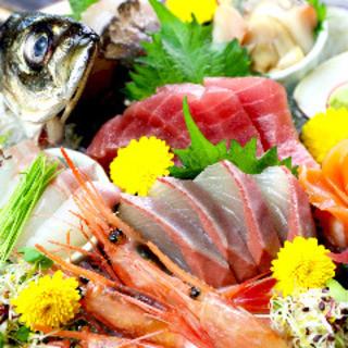 目利きが選ぶ全国各地の旬な鮮魚