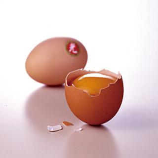 KANSAIのこだわり「卵」