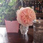カフェ サルーテ - カウンターにも美しいしつらえ
