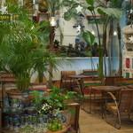レインボー カフェ - 緑に囲まれた南国風な空間