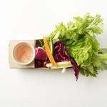 水上ビアガーデン - 新鮮野菜のスティックサラダ