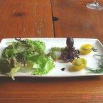 王様のレストラン - サラダ